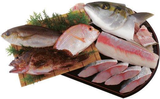 R840 五島列島旬の地魚大漁セット(約3人前)