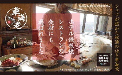 【B3-001】新松浦漁協 活きくるまえび400g