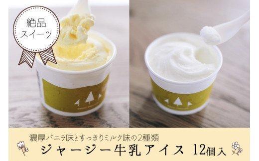 ジャージー牛乳アイス12個(ミルク・バニラ各6個)
