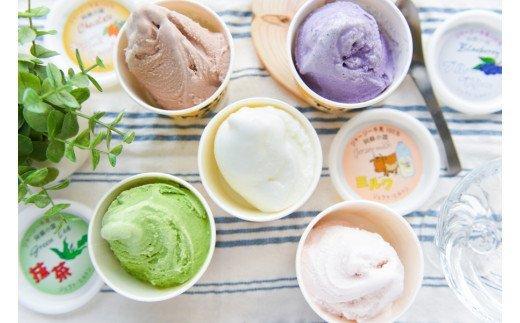 【希少なジャージー牛乳100%使用】濃厚!手作りアイスクリーム(12個入)