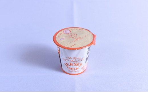 【小国郷特産ジャージー牛乳を使用!】ヨーグルトセット(YS−1B)