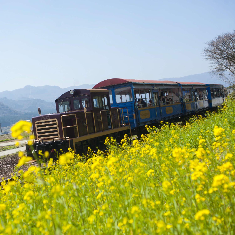 熊本県 南阿蘇村