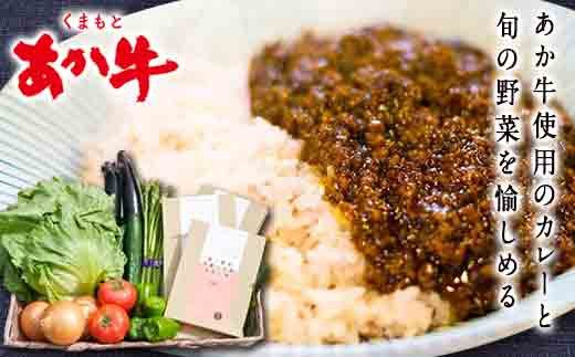 南阿蘇あか牛スパイスキーマカレー辛口4食+旬のお野菜セット