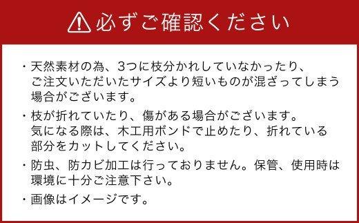 TSUKIGI みつまた 50cm~80cm 白枝 インテリア オブジェ