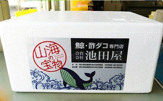鯨極(赤身鯨の南蛮漬) 500g くじら 池田屋 加工品