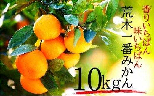 【予約受付開始】荒木一番みかん10kg