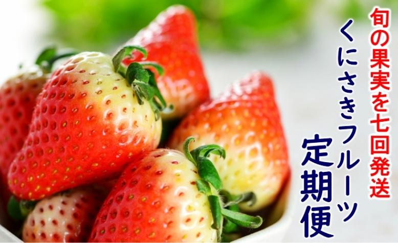 くにさき旬のフルーツ1年間定期便/計7回発送
