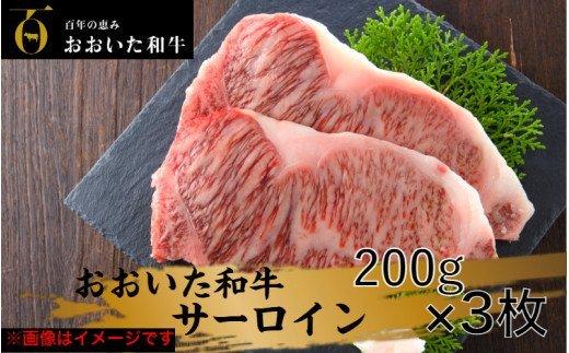 冷蔵発送/おおいた和牛サーロインステーキ600g
