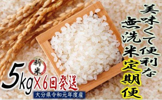 5kg×6回発送!便利で美味しい無洗米/半年間定期便