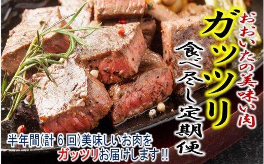 おおいたの美味い肉ガッツリ食べ尽し定期便/計6回発送