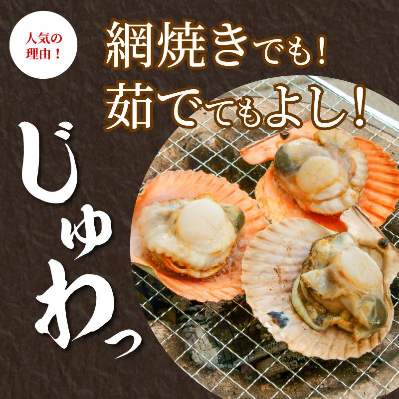 日豊海岸育ち ヒオウギ貝(冷凍)10枚入り(サイズ8cm程度)