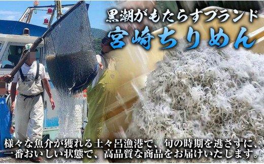 【マルナカ海産】しらす丼セット10食分(40g×10袋)特製醤油付き