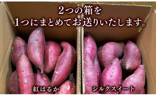 【先行予約】延岡産無農薬栽培さつまいも食べ比べセット5kg(紅はるか・シルクスイート)(2021年9月発送開始)