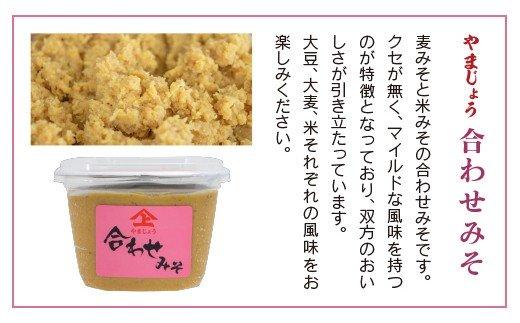 「100年以上の歴史」徳山みそ・しょうゆ醸造場 3種の味噌3個セット【A155】