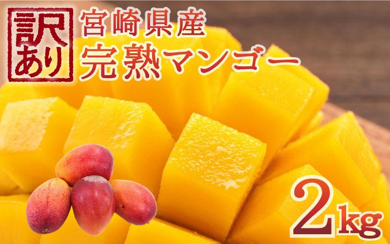 <先行予約>[訳アリ]完熟マンゴー《家庭用》2kg ※2021年4月~8月の収穫期間内出荷【C281】