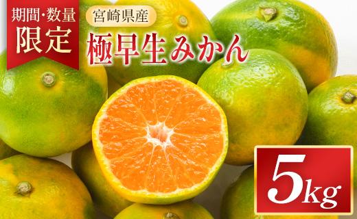 <期間・数量限定>宮崎県産 極早生みかん 5kg【B513】