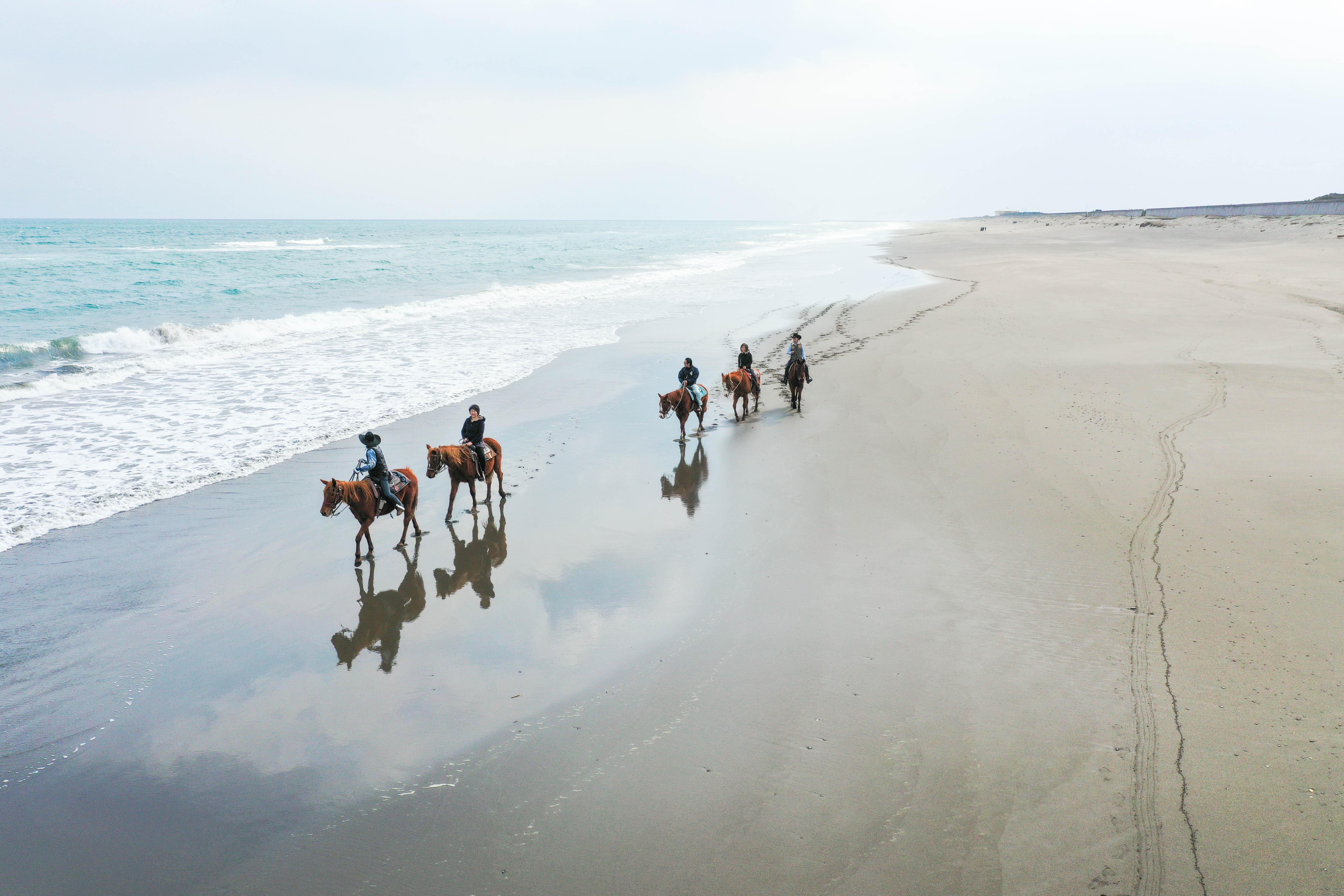 西日本トップクラスの快適さ!潮風感じる乗馬体験(最大4名)【T8】