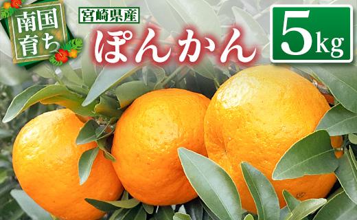 『予約受付開始』南国育ち 宮崎県産 ぽんかん 5kg【B478】