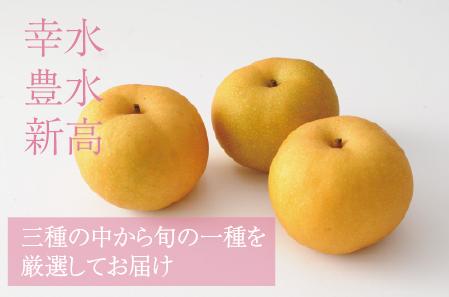 「先行予約」<品種おまかせ>旬の梨3kg ※2021年7月中旬から10月下旬の収穫期間内出荷【A193】