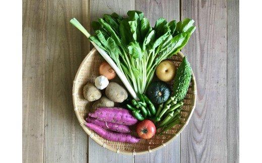 宮崎県産の新鮮野菜8種盛りセット【B374】