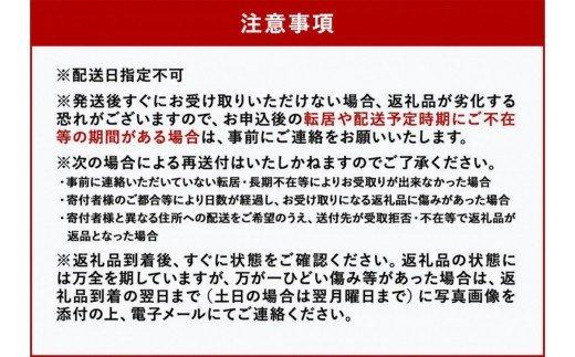 [数量限定]希少!国産<新富ライチ>40g前後×10玉【B120】