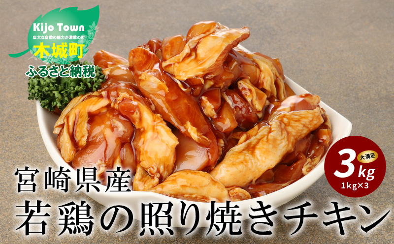 K16_0059 宮崎県産若鶏の照り焼きチキン