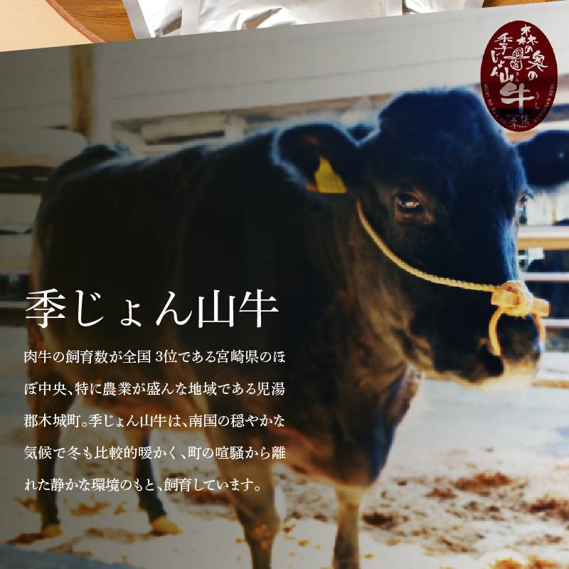 K16_0012 <「山牛」のオリジナルカレー10パックセット>