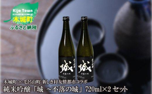 K21_0002 <木城町・毛呂山町 新しき村友情都市コラボ 日本酒 純米吟醸「城 ~不落の城」2本>