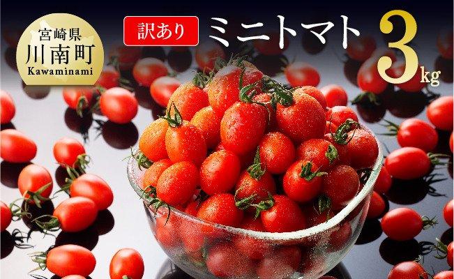 【令和3年12月発送分】【訳あり】宮崎県産ミニトマト3kg