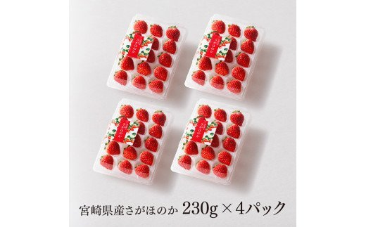 【令和4年2月上旬発送分】宮崎県産いちご「さがほのか」 230g×4パック