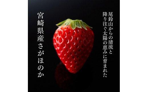 【令和4年3月中旬発送分】宮崎県産いちご「さがほのか」 230g×4パック
