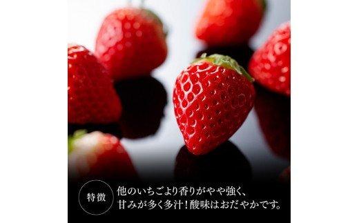 【令和4年3月上旬発送分】宮崎県産いちご「さがほのか」 230g×4パック