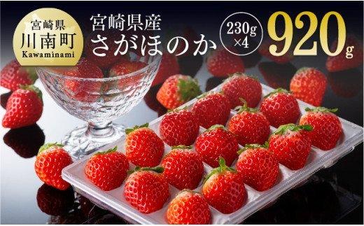 【令和4年3月下旬発送分】宮崎県産いちご「さがほのか」 230g×4パック