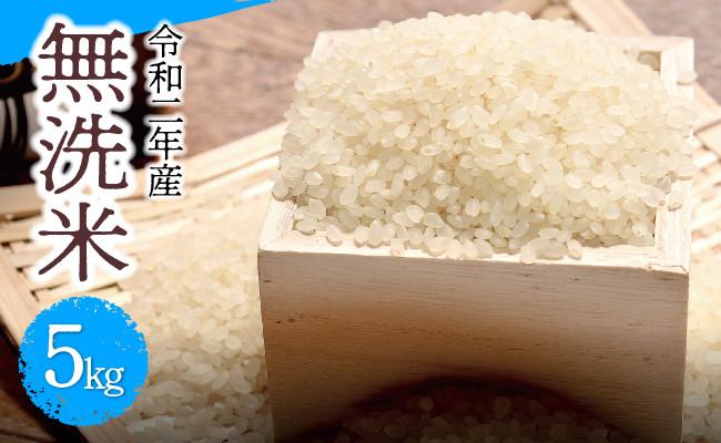 【令和2年産】無洗米こしひかり