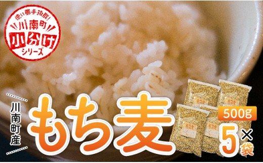 令和3年産川南町産もち麦(500g×5)