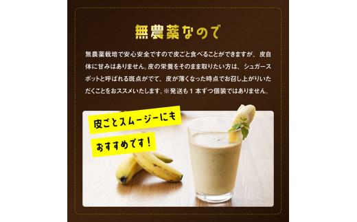 【訳あり】国産バナナ1kg 3ヶ月定期便