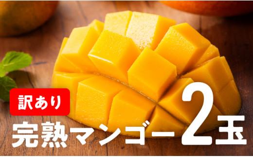 【訳あり】宮崎県完熟マンゴー2玉(令和3年発送)