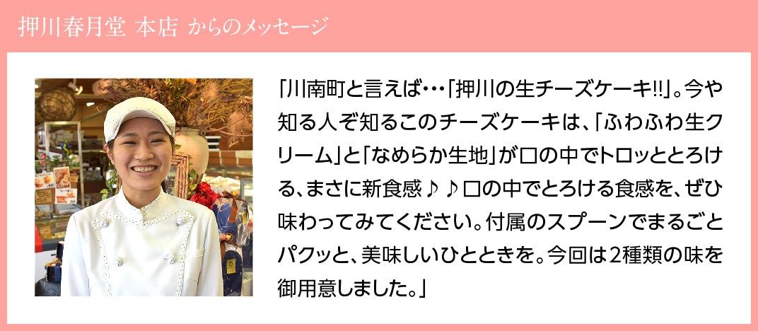 【贈答用】『押川春月堂本店』とろける生チーズケーキセット(プレーン&チョコ)