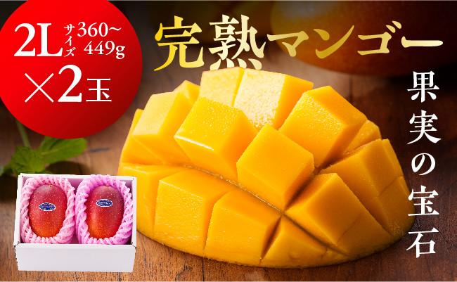 ※糖度15度以上※完熟マンゴー「果実の宝石」2L×2玉(令和3年発送)