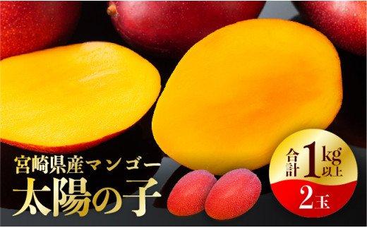 宮崎マンゴー『太陽の子』2玉(1kg以上)