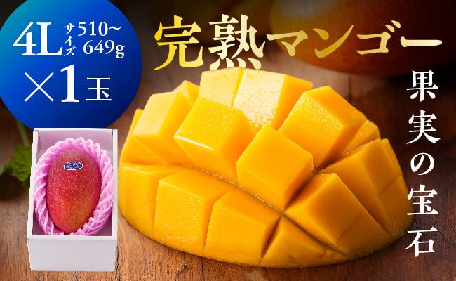 ※糖度15度以上※完熟マンゴー「果実の宝石」4L×1玉(令和3年発送)