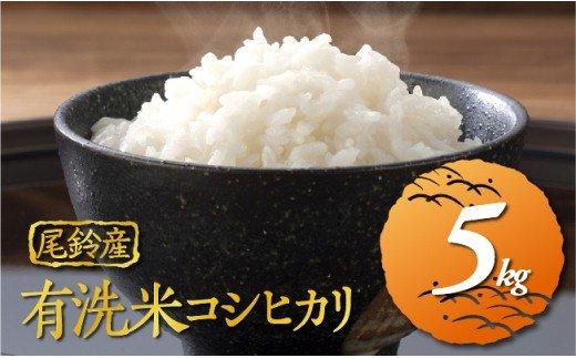 JA尾鈴米コシヒカリ5kg(有洗米)