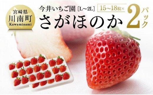 【令和4年1月発送】宮崎県産いちご 『さがほのか』(L~2L) 2パック