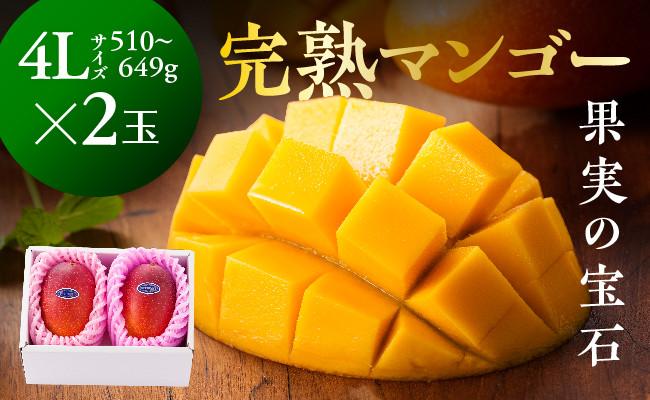 ※糖度15度以上※完熟マンゴー「果実の宝石」4L×2玉(令和3年発送)