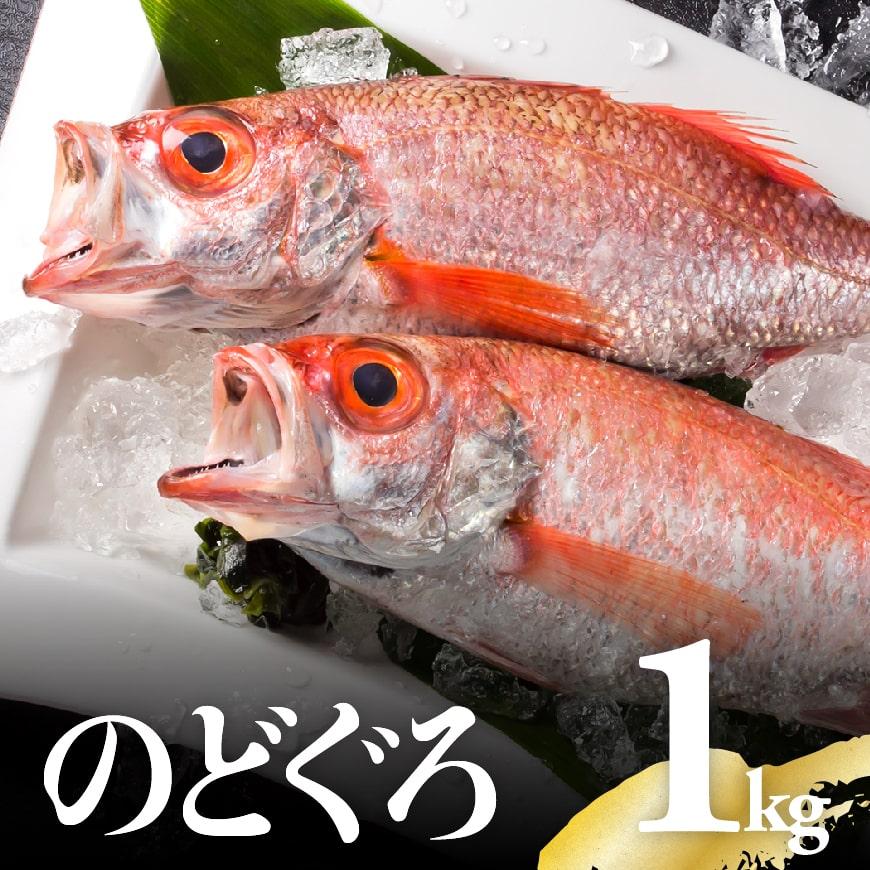 川谷水産厳選のどぐろ(アカムツ)約1kg