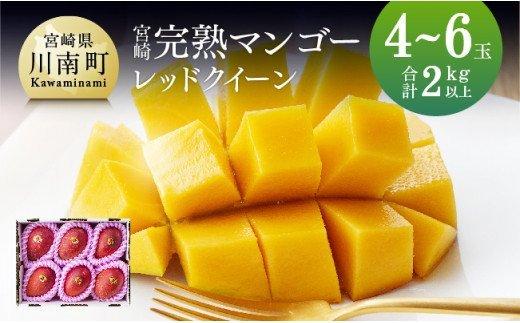 完熟マンゴー『レッドクイーン』4玉~6玉(計2kg以上)