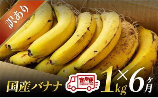 【訳あり】国産バナナ1kg 6ヶ月定期便