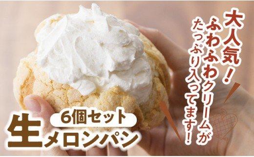 『押川春月堂本店』生メロンパン6個