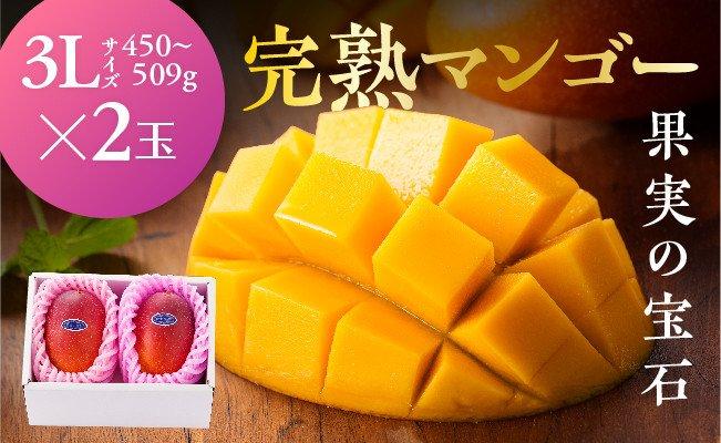 ※糖度15度以上※完熟マンゴー「果実の宝石」3L×2玉(令和3年発送)