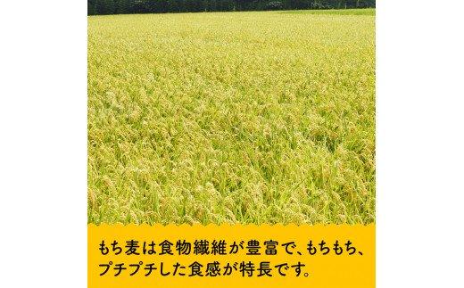 令和2年産お米5kg(夏の笑み)ともち麦500g×2袋